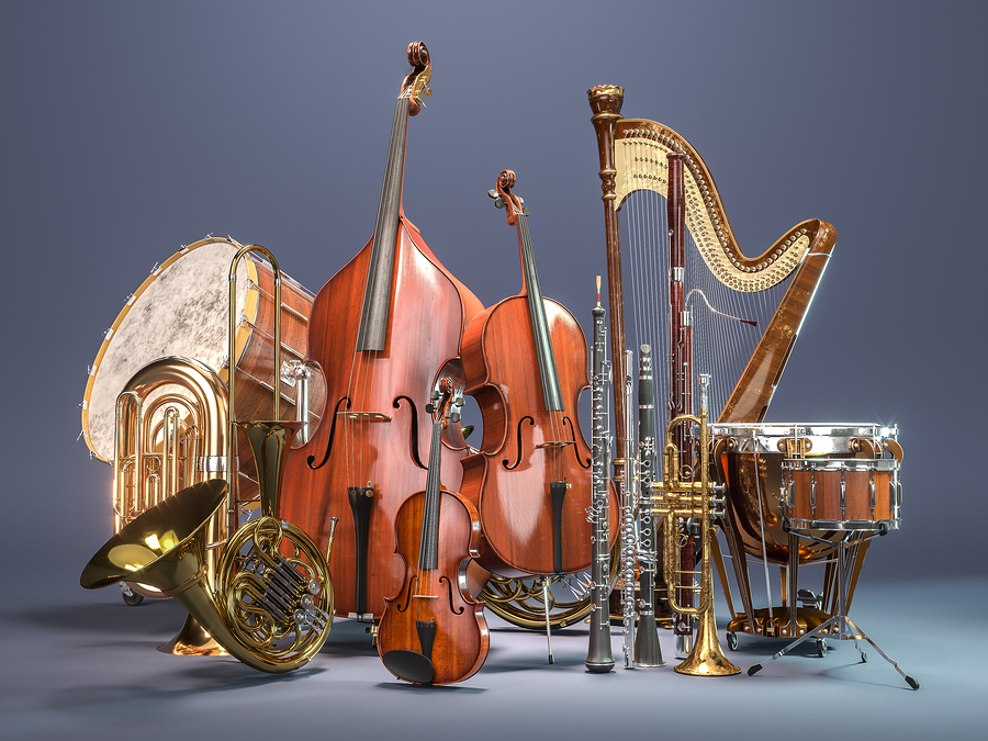 Looking for a band or orchestra for your student?